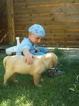 Kindundhund 016